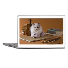 Rag Doll Kitten and Art Laptop Skins