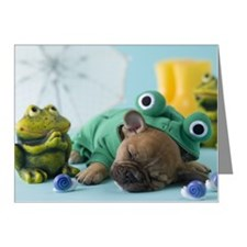 French Bulldog Puppy and Rai Note Cards (Pk of 20)