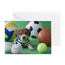 Beagle Puppy and Sports Greeting Card