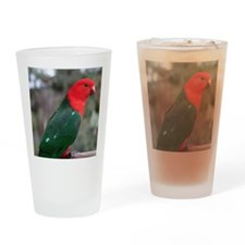King parrot Drinking Glass