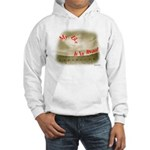 My Life Is In Ruins - Chaco Canyon Hooded Sweatshi