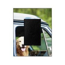 Pet dog sitting in a car Picture Frame