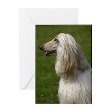 Afghan hound Greeting Card