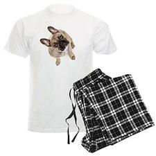 High angle view of French bul Pajamas
