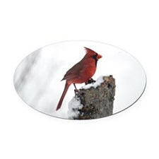 Cardinal on stump Oval Car Magnet