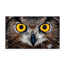 Eagle owl eyes Rectangle Car Magnet