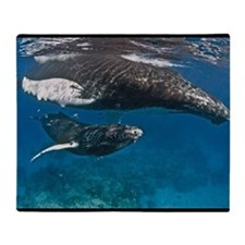 Humpback Whale Mother & Calf Throw Blanket