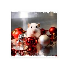 "White dwarf hamster posing  Square Sticker 3"" x 3"""