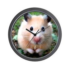 Syrian hamster outdoors Wall Clock