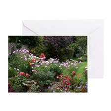 Colourful flowers in English garden  Greeting Card