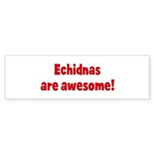 Echidnas are awesome Bumper Bumper Sticker