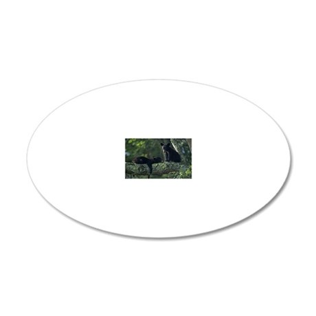 Black bear cubs in tree, Gre 20x12 Oval Wall Decal