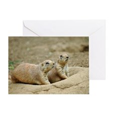 Groundhogs Greeting Card