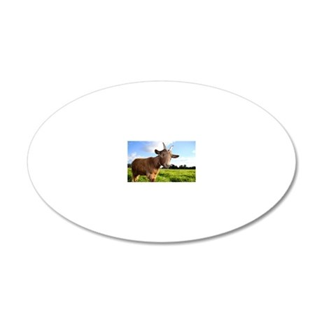 A cute farm pigmy goat smile 20x12 Oval Wall Decal
