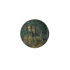 Autumn pines Mini Button