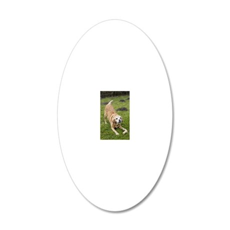 Labrador stretching on grass 20x12 Oval Wall Decal