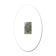 blackbeartrackjournal 20x12 Oval Wall Decal