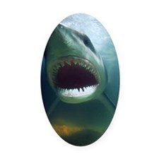 Great White Shark Oval Car Magnet