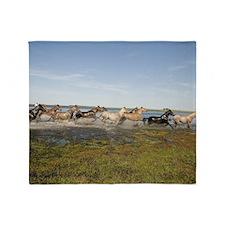 Wild horses running in water Throw Blanket