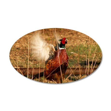 Pissed off Pheasant 35x21 Oval Wall Decal
