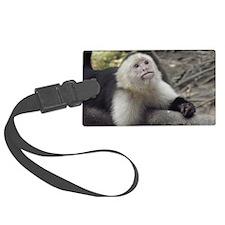 Capuchin Monkey Luggage Tag