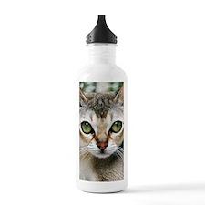 Singapura Cat Water Bottle