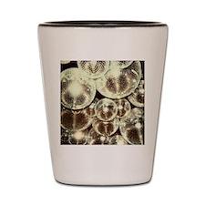 disco balls Shot Glass