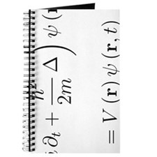 Schrodinger equation, delta, white, rotate Journal