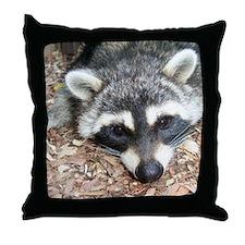 Hiway Coon Throw Pillow
