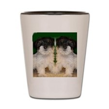 Chorkie puppie Shot Glass