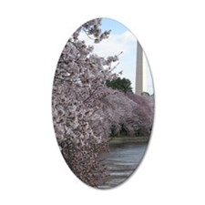 Peal bloom cherry blossom fr Wall Decal