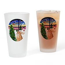 X Window - Orange Tabby 46 Drinking Glass