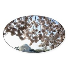 Peal bloom cherry blossom frames Je Decal