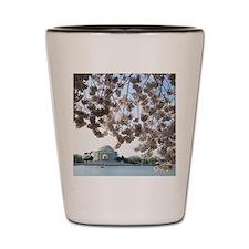 Peal bloom cherry blossom frames Jeffer Shot Glass