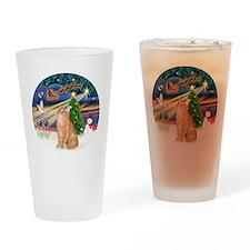 X Magic - Orange Tabby 46 Drinking Glass