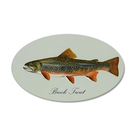 Brook Trout 35x21 Oval Wall Decal