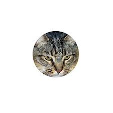 Sammy Mini Button