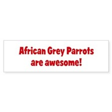 African Grey Parrots are awes Bumper Bumper Sticker