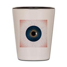 eye_texture_2_flattened-JPEG-BIG Shot Glass
