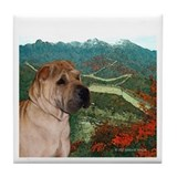 Shar Pei on Wall in the Fall Tile Coaster