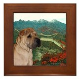 Shar Pei on Wall in the Fall Framed Tile