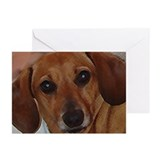Molly Greeting Cards (Pk of 10)
