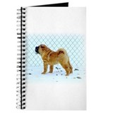 Shar Pei Journal
