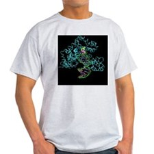 Taq polymerase replicating DNA T-Shirt