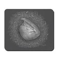 Sleeping squirrel Mousepad