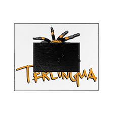 Terlingua Tarantula Picture Frame