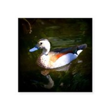 "FLOATING DUCK Square Sticker 3"" x 3"""
