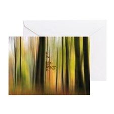 Colours of Autumn Forest Greeting Card