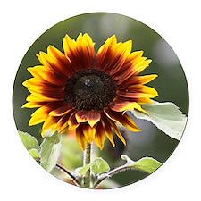 Sun Flower Round Car Magnet