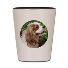 Dexter The Dog2 Shot Glass